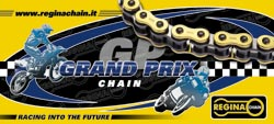 Regina 520 GPZ  X-RING GOLD Superbike & Supoersport Race Chain